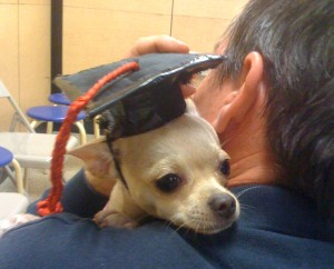 Here I am on graduation day at PetSmart.